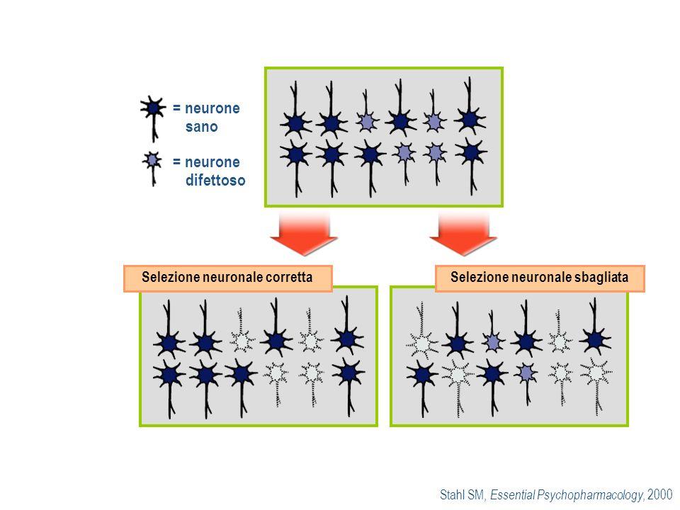 Selezione neuronale corretta Selezione neuronale sbagliata