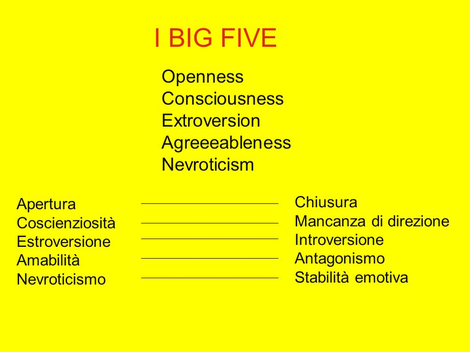 I BIG FIVE Openness Consciousness Extroversion Agreeeableness