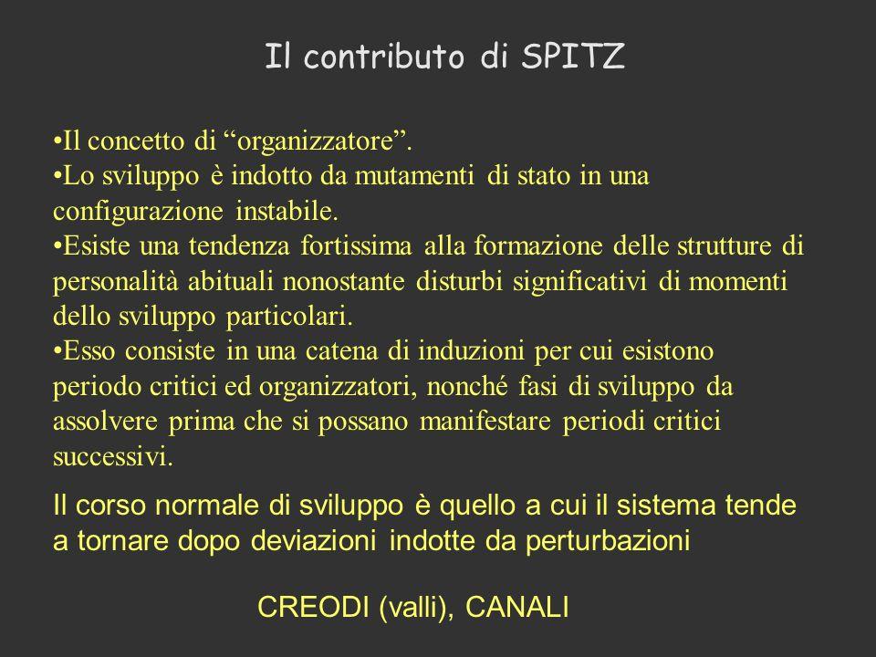 Il contributo di SPITZ Il concetto di organizzatore .