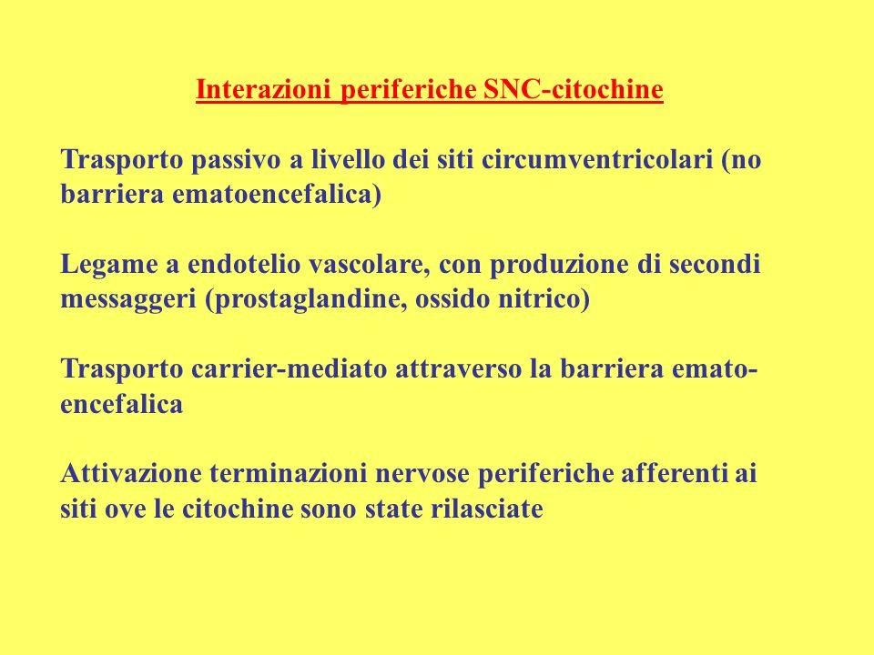 Interazioni periferiche SNC-citochine