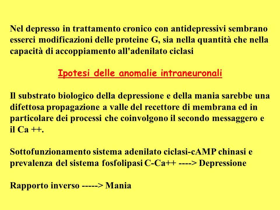 Ipotesi delle anomalie intraneuronali