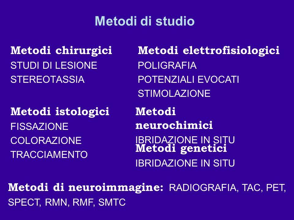 Metodi di studio Metodi chirurgici Metodi elettrofisiologici