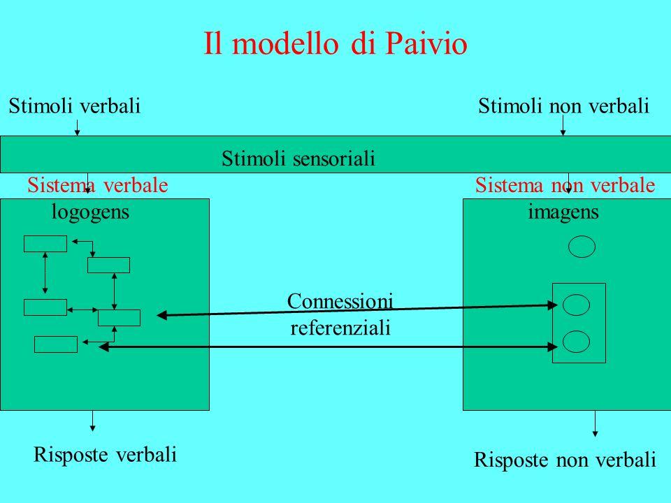 Il modello di Paivio Stimoli verbali Stimoli non verbali
