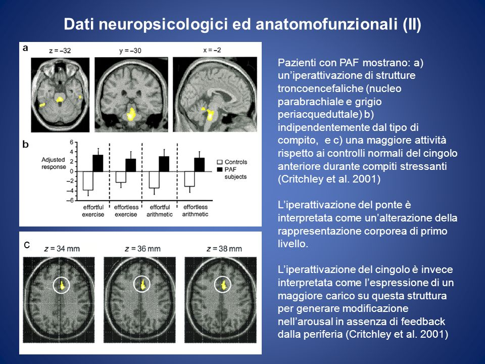 Dati neuropsicologici ed anatomofunzionali (II)