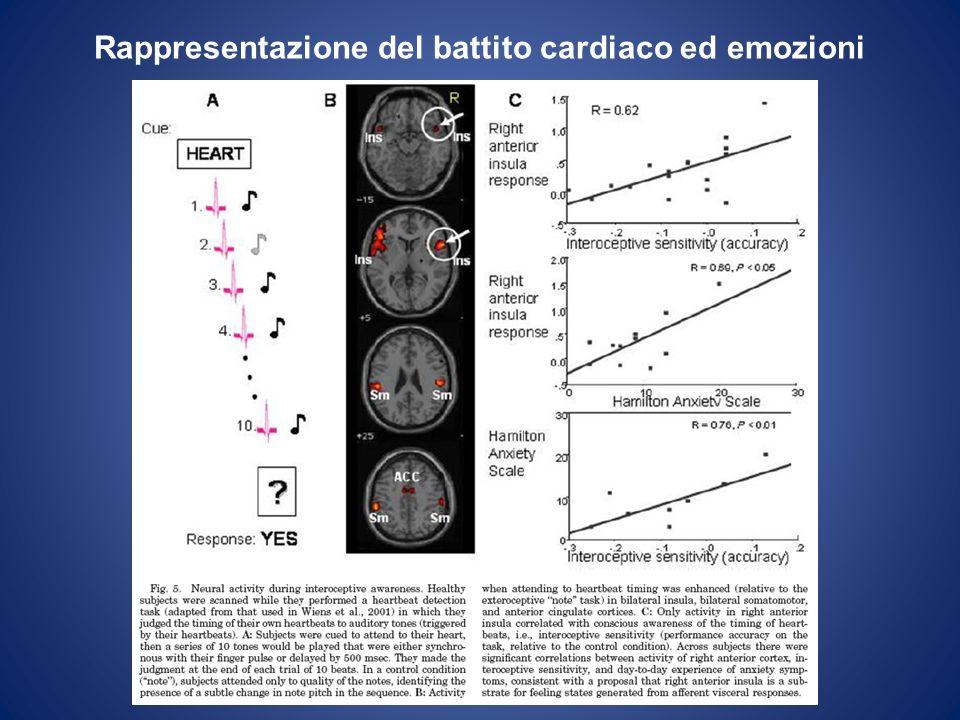 Rappresentazione del battito cardiaco ed emozioni