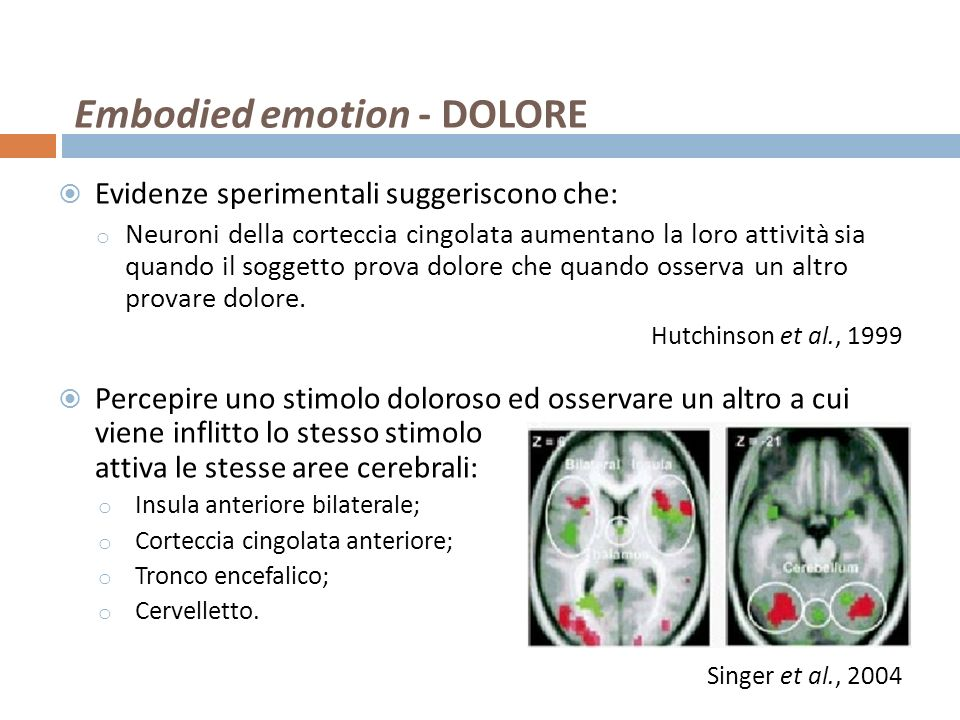 Embodied emotion - DOLORE