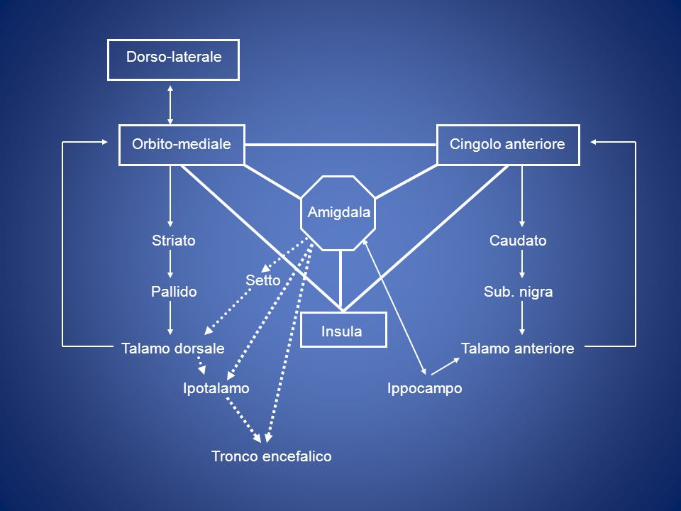 Orbito-mediale Cingolo anteriore. Insula. Caudato. Sub. nigra. Talamo anteriore. Striato. Pallido.
