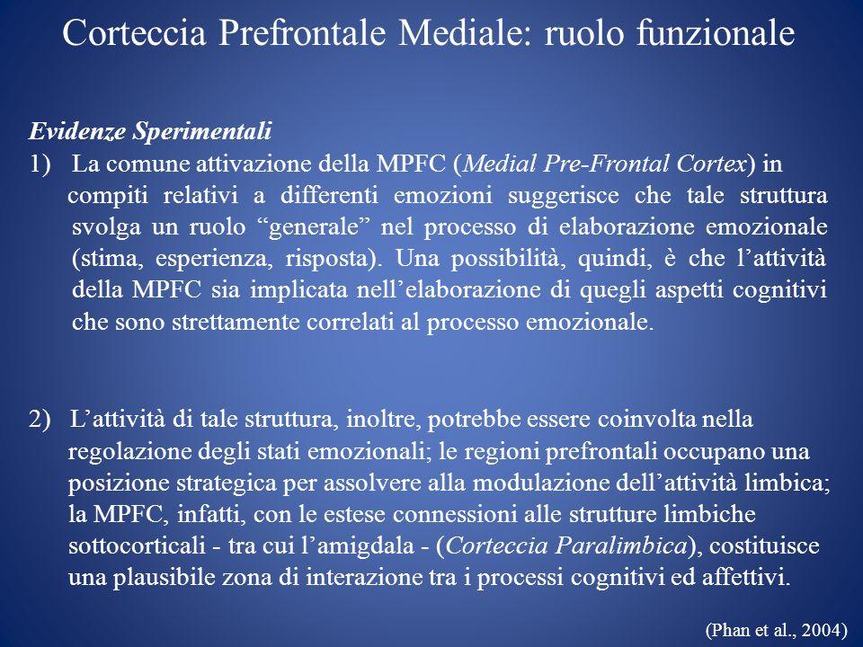 Corteccia Prefrontale Mediale: ruolo funzionale
