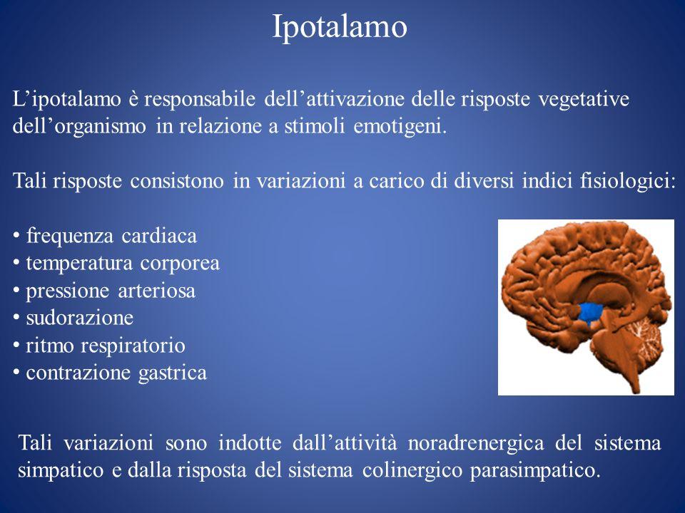 IpotalamoL'ipotalamo è responsabile dell'attivazione delle risposte vegetative. dell'organismo in relazione a stimoli emotigeni.