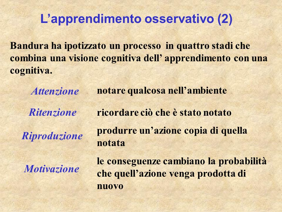 L'apprendimento osservativo (2)