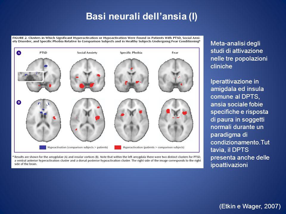 Basi neurali dell'ansia (I)