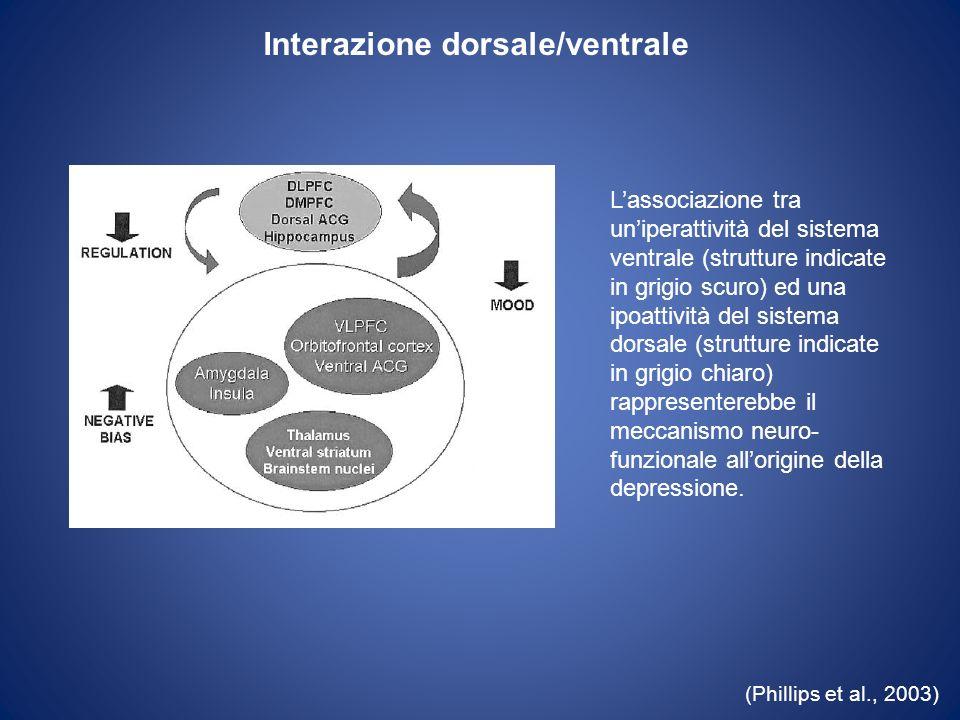 Interazione dorsale/ventrale