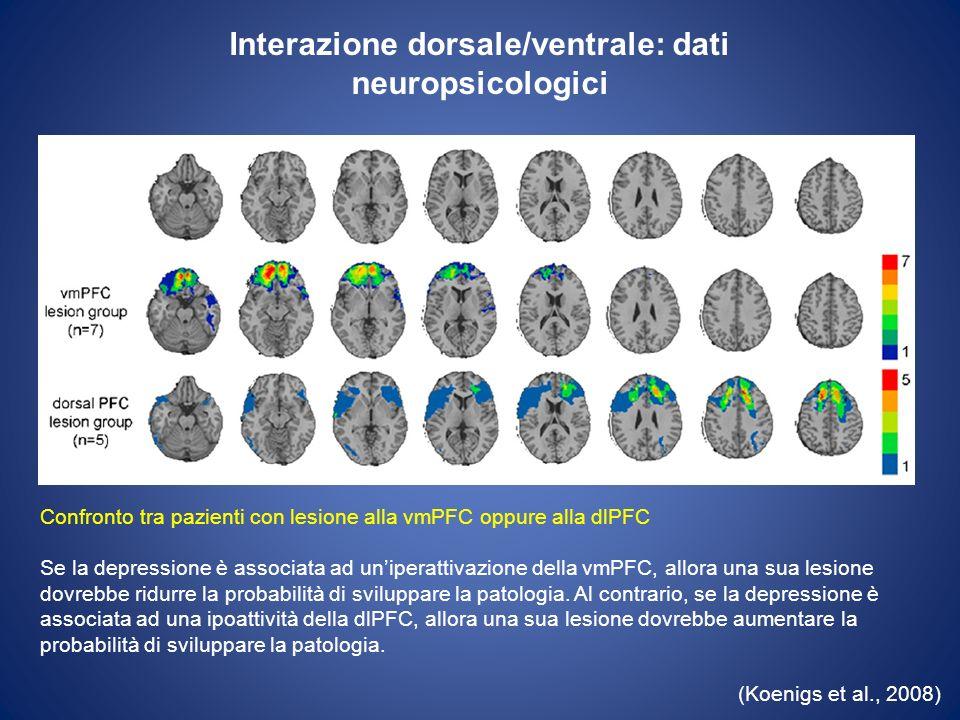 Interazione dorsale/ventrale: dati neuropsicologici