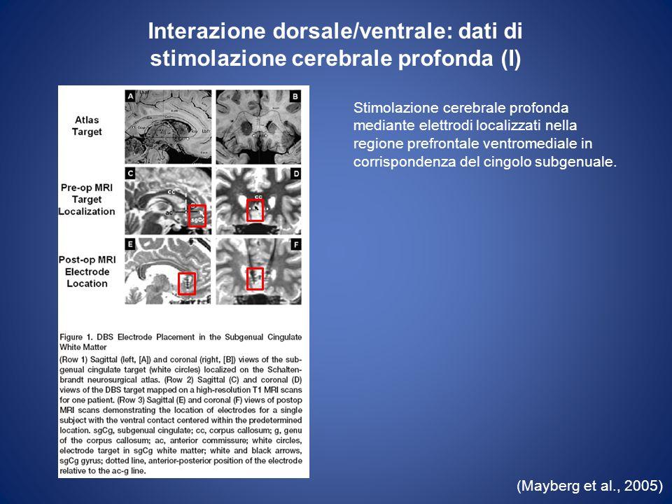Interazione dorsale/ventrale: dati di stimolazione cerebrale profonda (I)