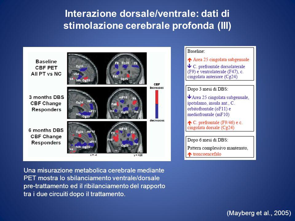 Interazione dorsale/ventrale: dati di stimolazione cerebrale profonda (III)