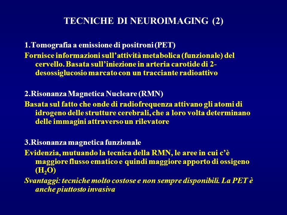 TECNICHE DI NEUROIMAGING (2)