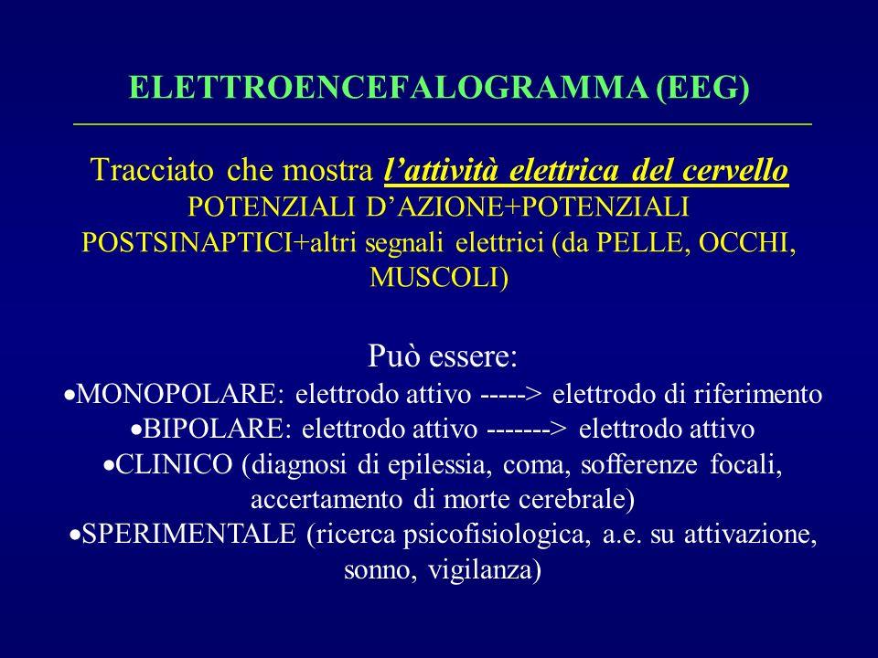 ELETTROENCEFALOGRAMMA (EEG) Tracciato che mostra l'attività elettrica del cervello POTENZIALI D'AZIONE+POTENZIALI POSTSINAPTICI+altri segnali elettrici (da PELLE, OCCHI, MUSCOLI)