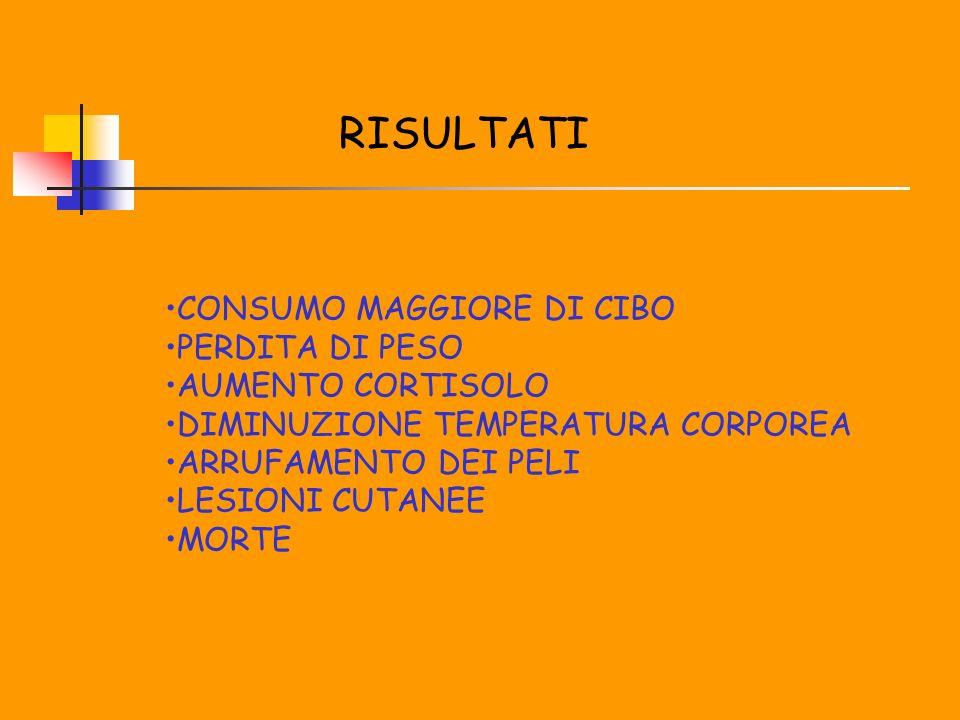 RISULTATI CONSUMO MAGGIORE DI CIBO PERDITA DI PESO AUMENTO CORTISOLO