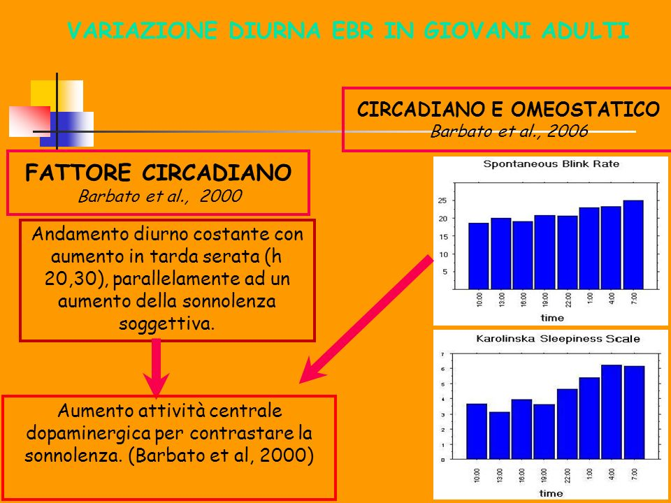 VARIAZIONE DIURNA EBR IN GIOVANI ADULTI CIRCADIANO E OMEOSTATICO