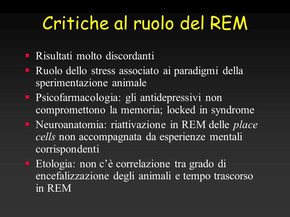 Critiche al ruolo del REM