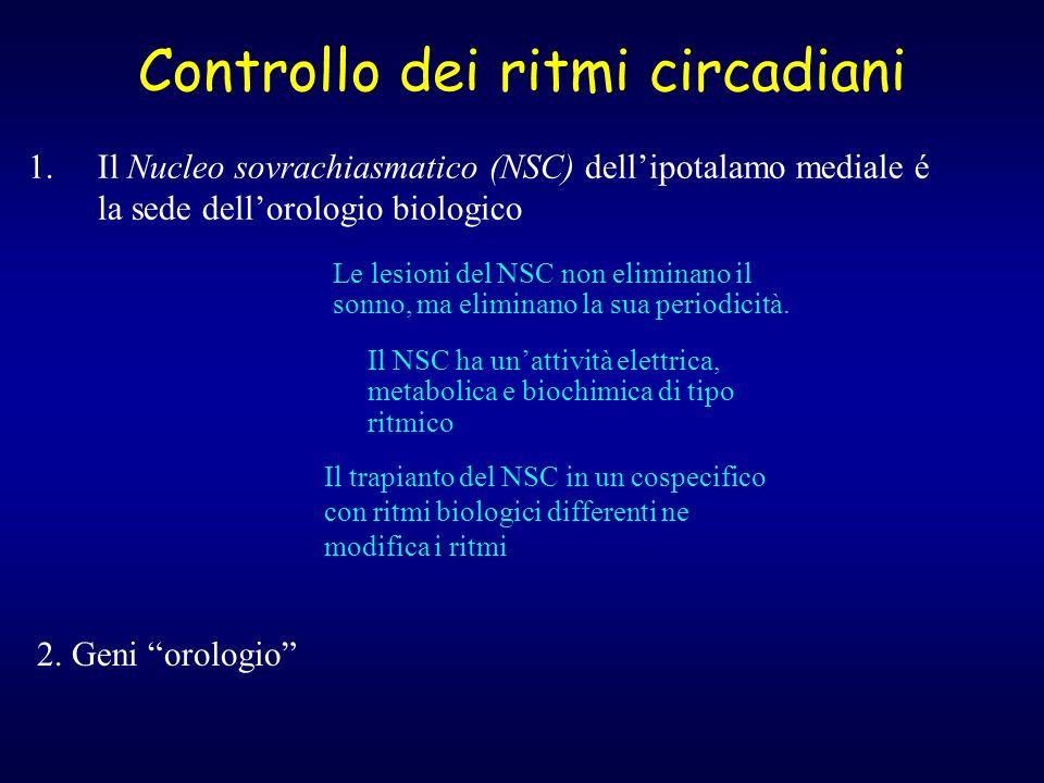 Controllo dei ritmi circadiani