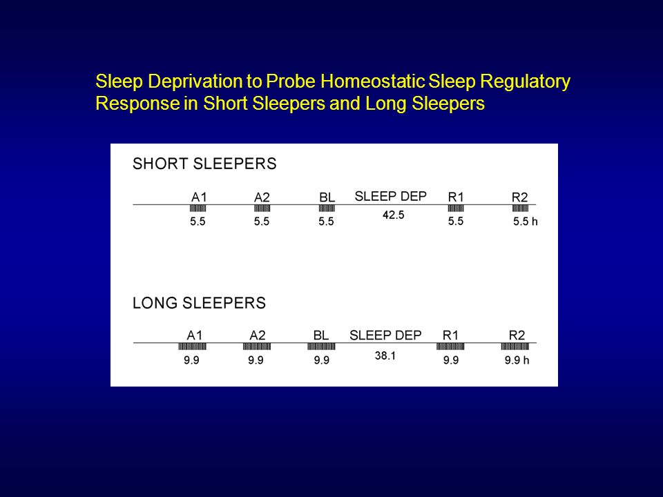 Sleep Deprivation to Probe Homeostatic Sleep Regulatory