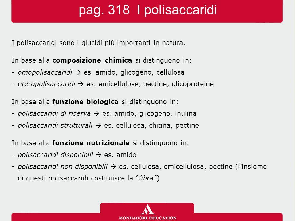pag. 318 I polisaccaridi I polisaccaridi sono i glucidi più importanti in natura. In base alla composizione chimica si distinguono in: