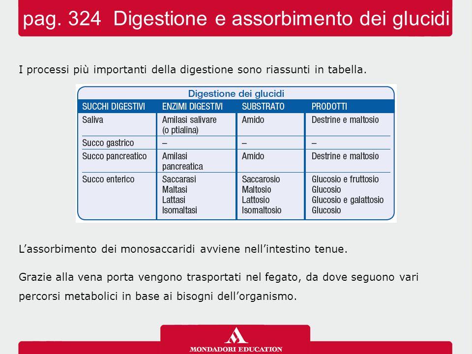 pag. 324 Digestione e assorbimento dei glucidi
