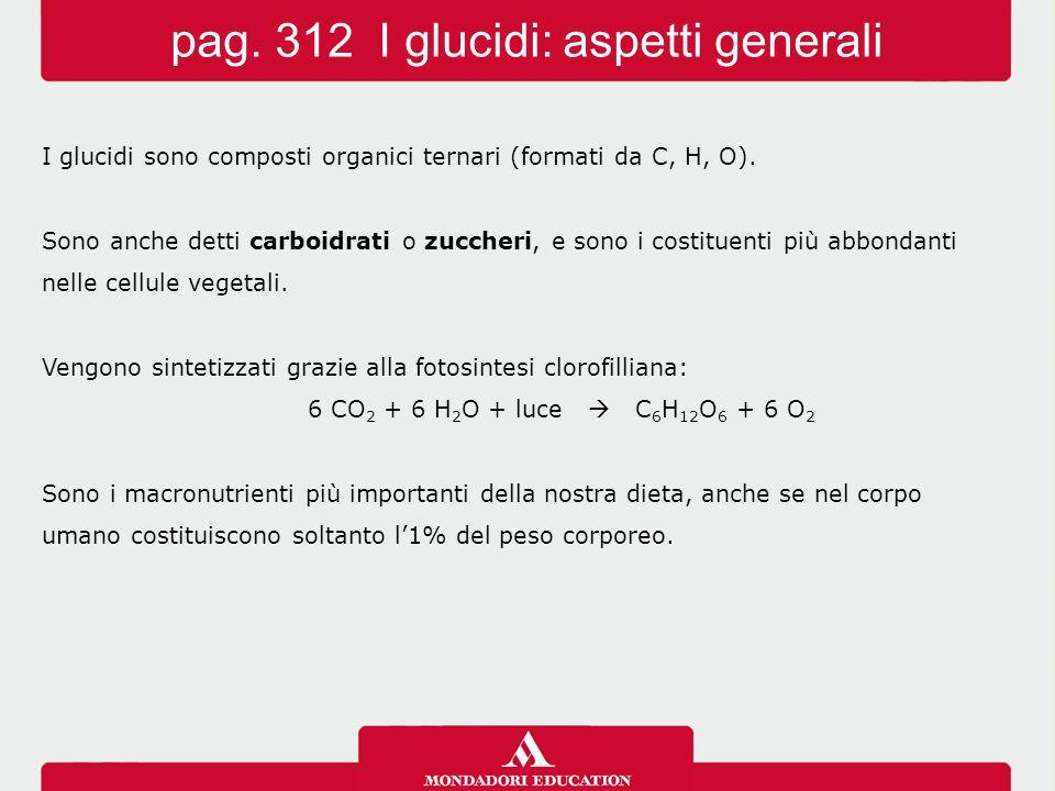 pag. 312 I glucidi: aspetti generali