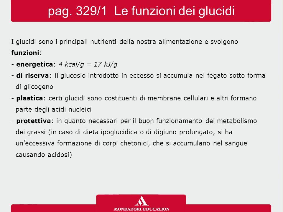 pag. 329/1 Le funzioni dei glucidi