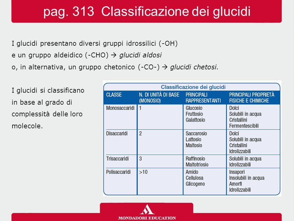 pag. 313 Classificazione dei glucidi