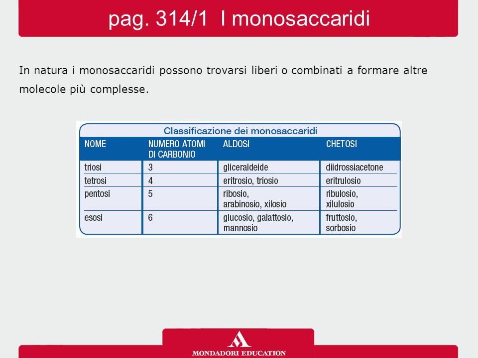 pag. 314/1 I monosaccaridi In natura i monosaccaridi possono trovarsi liberi o combinati a formare altre.