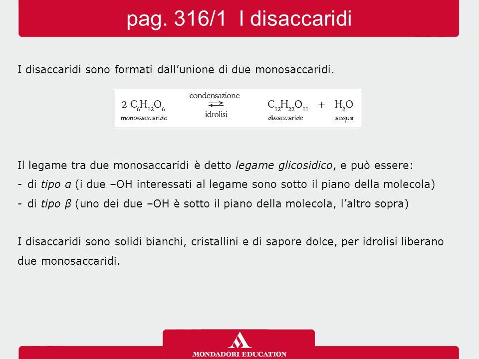 pag. 316/1 I disaccaridi I disaccaridi sono formati dall'unione di due monosaccaridi.