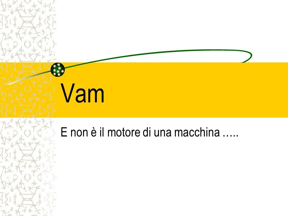 E non è il motore di una macchina …..