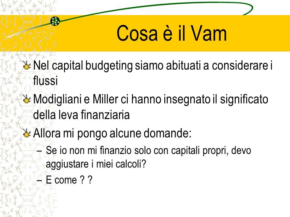 Cosa è il Vam Nel capital budgeting siamo abituati a considerare i flussi.