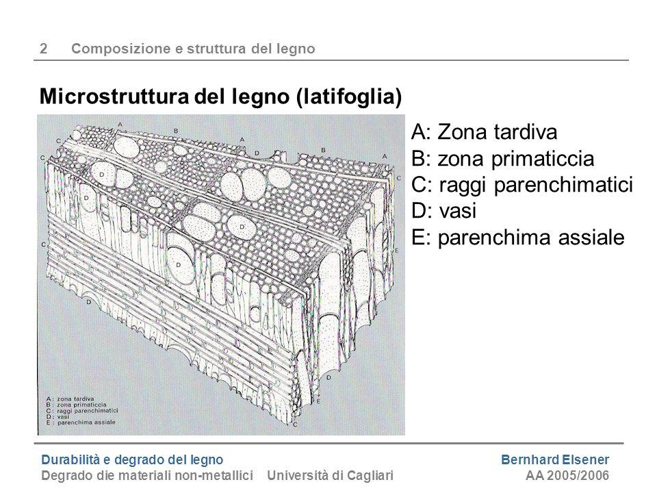 2 Composizione e struttura del legno
