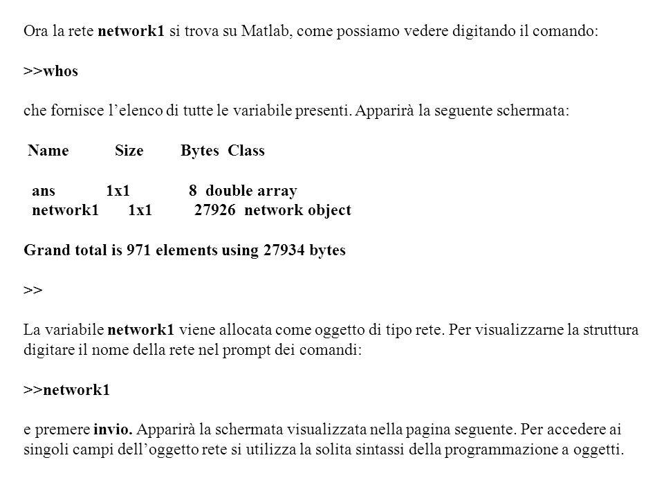 Ora la rete network1 si trova su Matlab, come possiamo vedere digitando il comando: