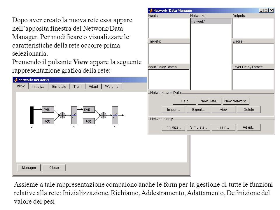 Dopo aver creato la nuova rete essa appare nell'apposita finestra del Network/Data Manager. Per modificare o visualizzare le caratteristiche della rete occorre prima selezionarla.