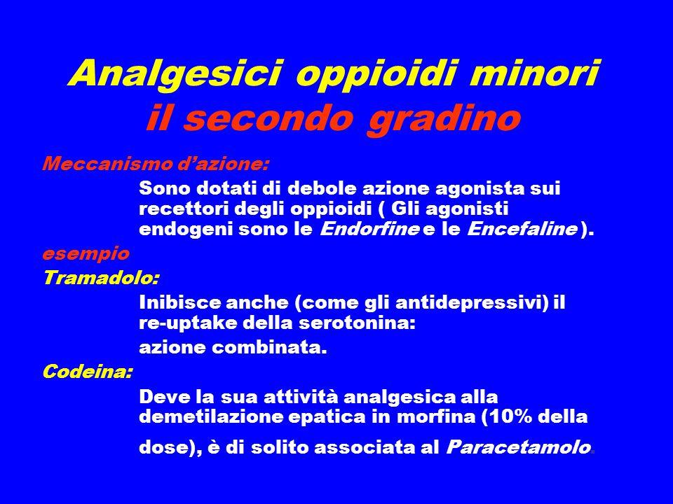 Analgesici oppioidi minori il secondo gradino