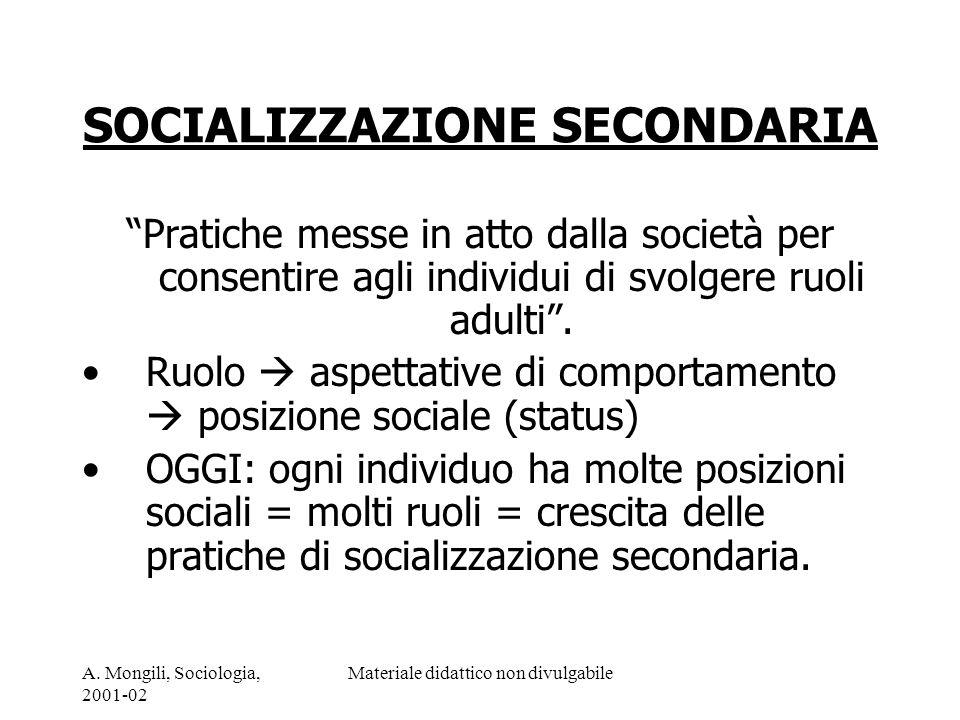 SOCIALIZZAZIONE SECONDARIA