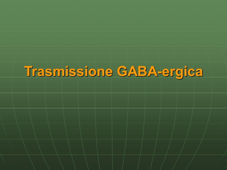 Trasmissione GABA-ergica