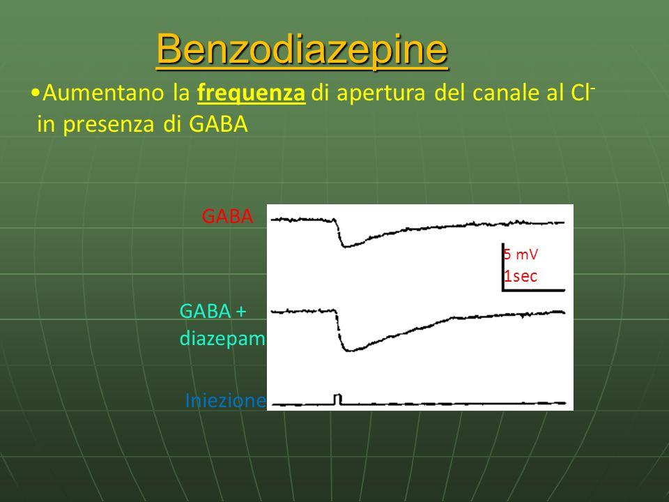 Benzodiazepine Aumentano la frequenza di apertura del canale al Cl- in presenza di GABA. GABA. GABA + diazepam.