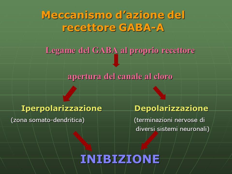 Meccanismo d'azione del recettore GABA-A
