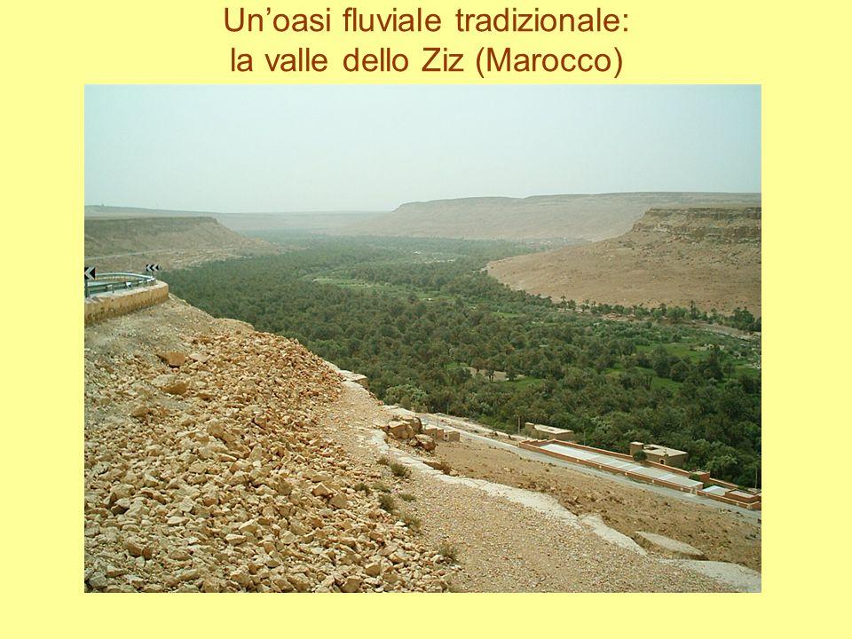 Un'oasi fluviale tradizionale: la valle dello Ziz (Marocco)