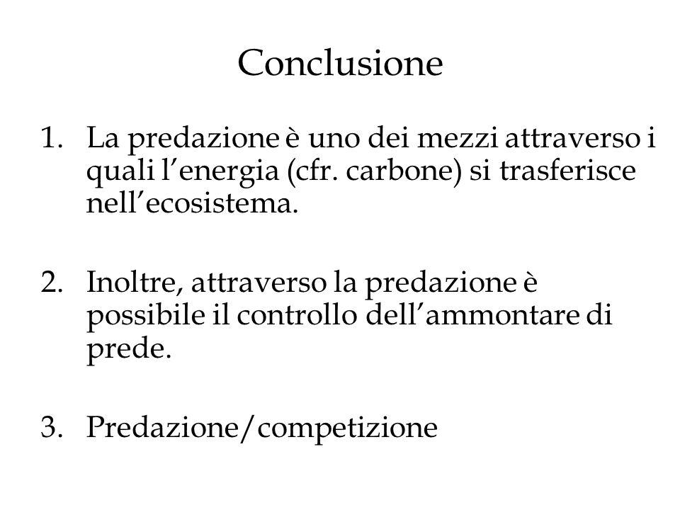 Conclusione La predazione è uno dei mezzi attraverso i quali l'energia (cfr. carbone) si trasferisce nell'ecosistema.