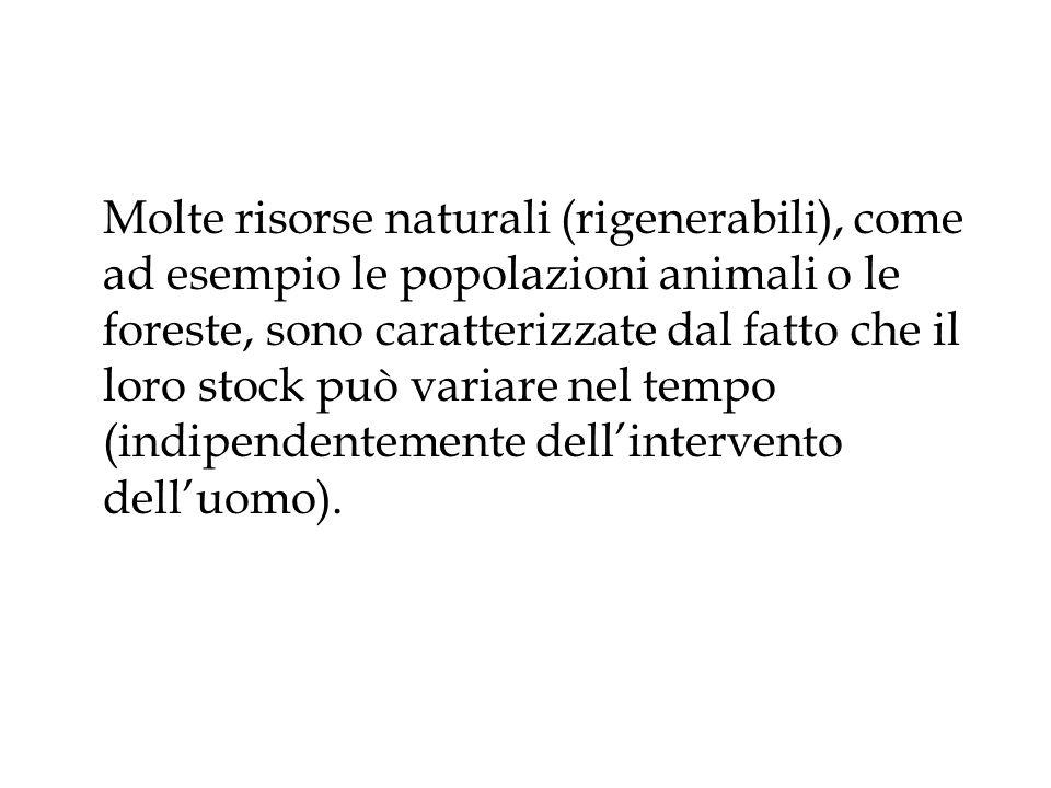 Molte risorse naturali (rigenerabili), come ad esempio le popolazioni animali o le foreste, sono caratterizzate dal fatto che il loro stock può variare nel tempo (indipendentemente dell'intervento dell'uomo).