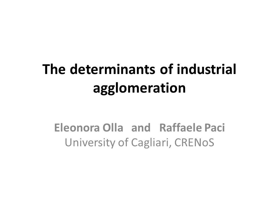 The determinants of industrial agglomeration