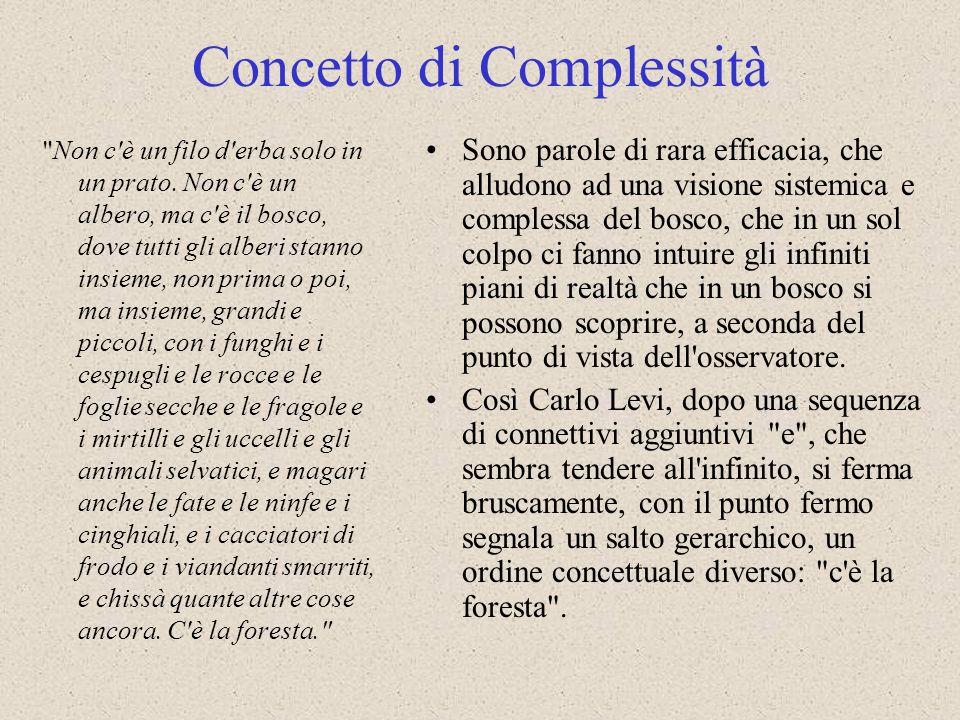 Concetto di Complessità