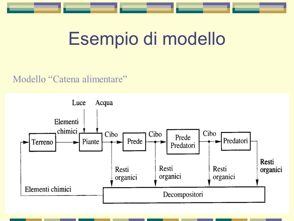 Esempio di modello Modello Catena alimentare