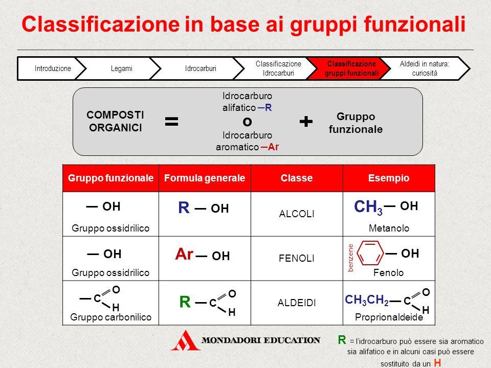 Classificazione in base ai gruppi funzionali
